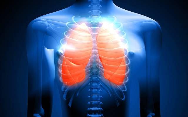 Skrzepliny krwi przemieszczają się z serca w kierunku płuc, przez co poważnie upośledzają funkcje obydwu narządów