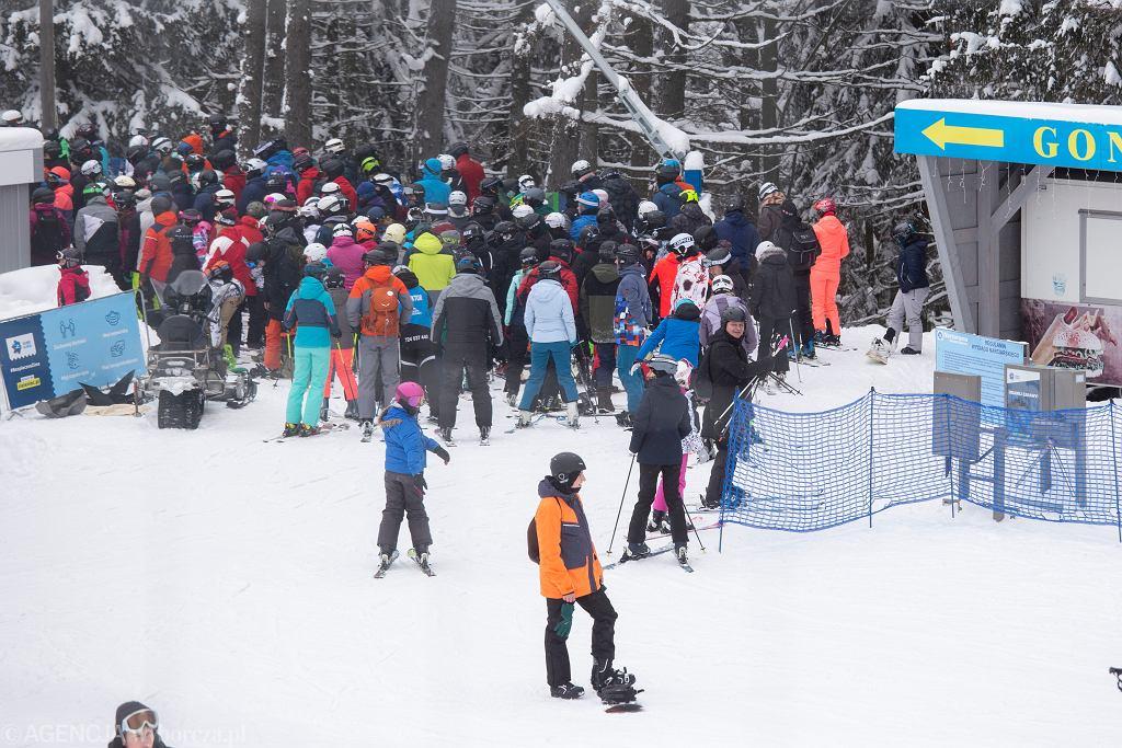 Tłumy turystów na stokach w Zieleńcu w połowie lutego
