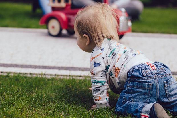 """""""Test awokado"""" pomoże stwierdzić, czy guz na głowie wymaga konsultacji z lekarzem? Pediatra wyjaśnia"""