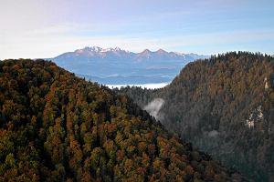 Wakacje w górach: popularne polskie pasma górskie i miejscowości