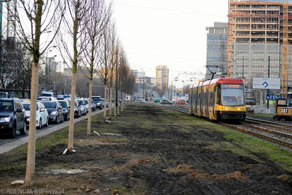 Sadzenie drzew przy ul. Towarowej w Warszawie