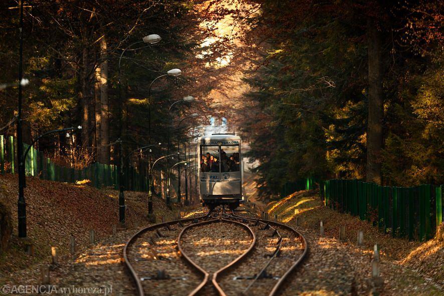 Spacer dookoła Krynicy-Zdroju. Prowadzący dookoła Krynicy-Zdroju żółty szlak należy do łatwych i przyjemnych. Zaczyna i kończy się na deptaku, a prowadzi m.in. przez Górę Parkową - popularne w mieście miejsce spacerów i rekreacji. Na Górze Parkowej mieści się Park Zdrojowy z licznymi ścieżkami. Inne szlaki wychodzące z Krynicy prowadzą m.in. na Jaworzynę Krynicką i Halę Łabowską.