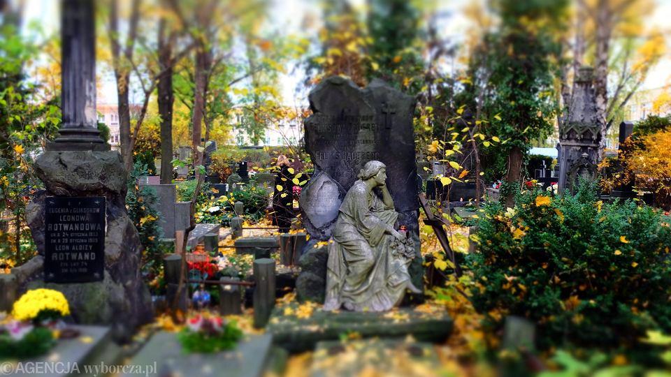 Na cmentarzach ewangelickich możemy spotkać różne rodzaje nagrobków - od grobowców przez płyty nagrobne po obeliski.