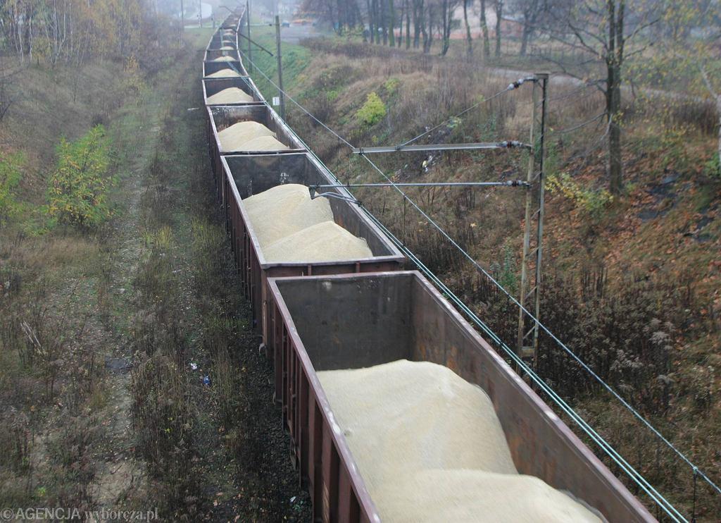Wagony towarowe (zdjęcie ilustracyjne)