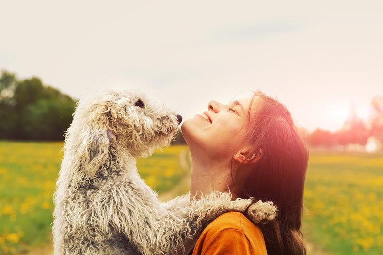 Terapeutyczna siła kontaktu z psem