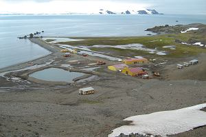 Praca na Antarktydzie - kandydaci już niemal wybrani. Kierowniczka wyprawy: Rekordowa liczba zgłoszeń