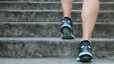 L-karnityna - czy jest skuteczna w walce z otyłością?