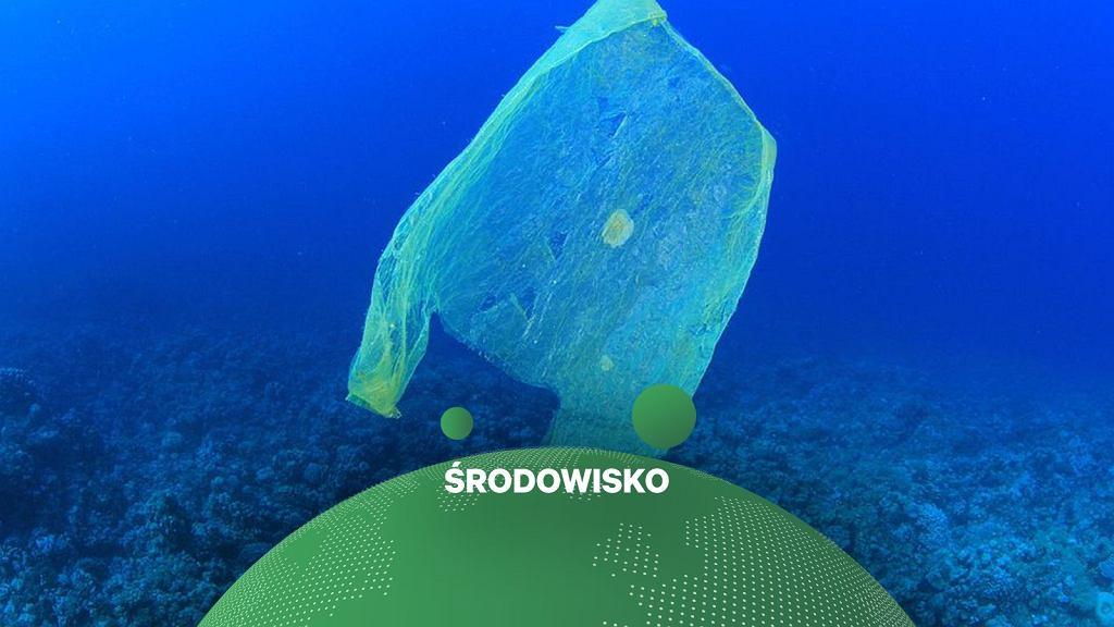 Zanieczyszczenie oceanów plastikiem jest większe niż sądzono