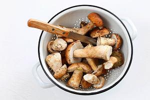 To mit, że grzyby nie mają składników odżywczych - mają! Pomagają też w leczeniu [ROZMOWA]
