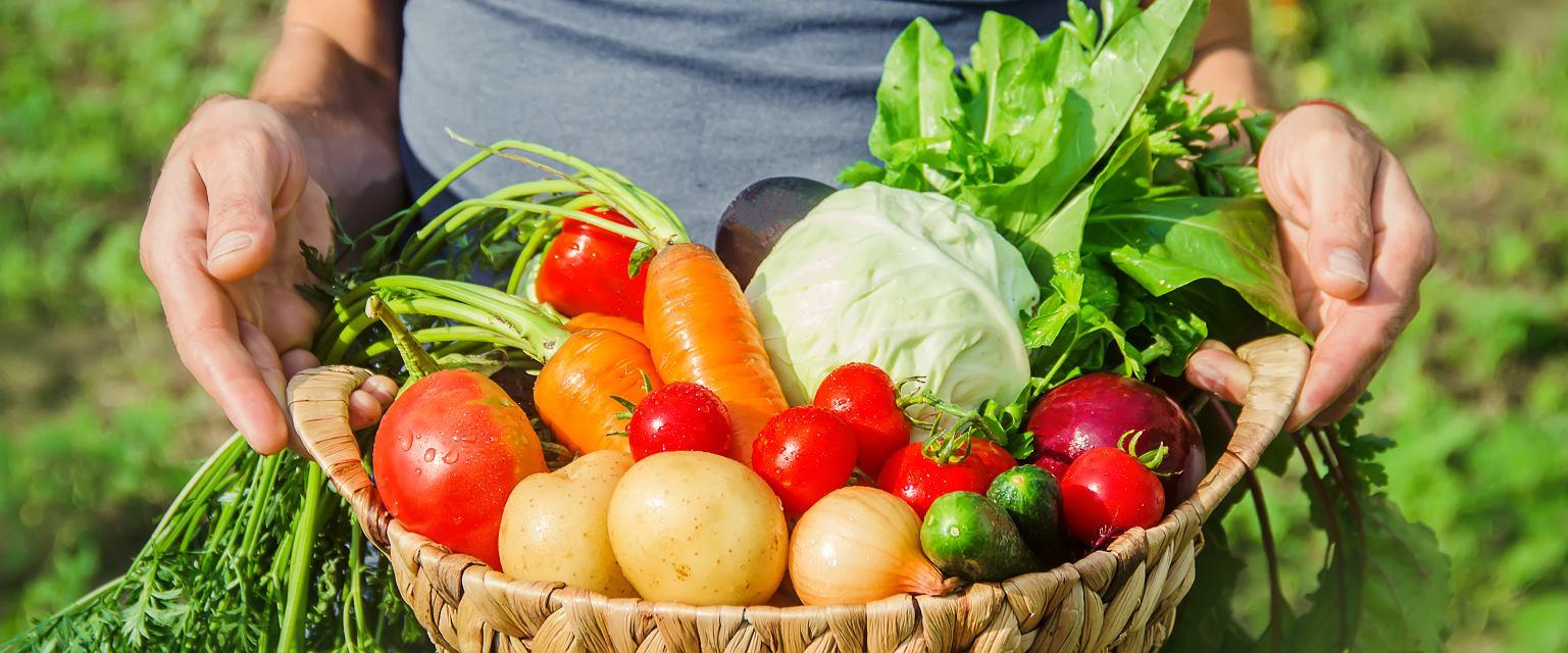 Suwerenność żywieniowa oznacza lokalność i sezonowość (fot. shutterstock.com)