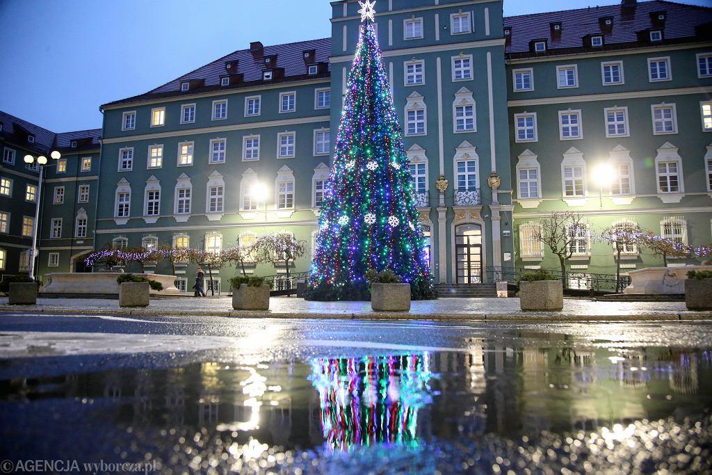 Dekoracje świąteczne w Szczecinie