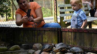 W wolne dni zoo w Myślęcinku cieszy się sporą popularnością rodzin z dziećmi