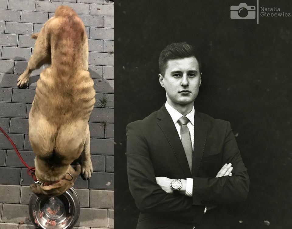 Konrad Kuźmiński miał ukraść zaniedbane psy