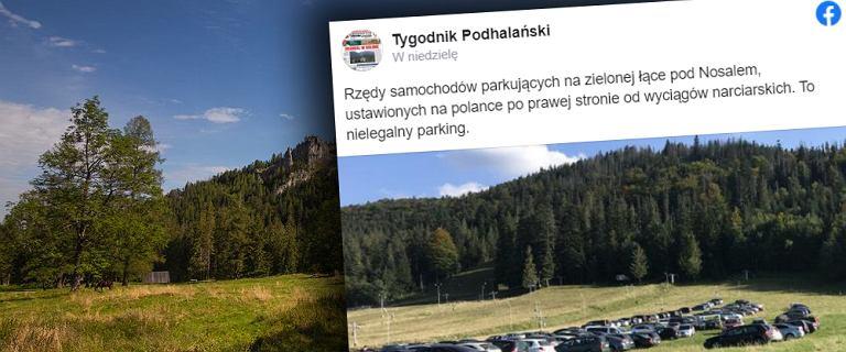 """Tatry. Nielegalny proceder pod Nosalem. """"Czyja łąka, tego parking?"""""""