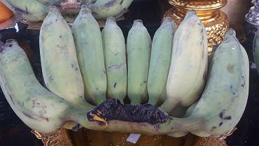 Blue Java, hawajskie banany czy banany lodowe charakteryzują się niebieskim odcieniem skórki.