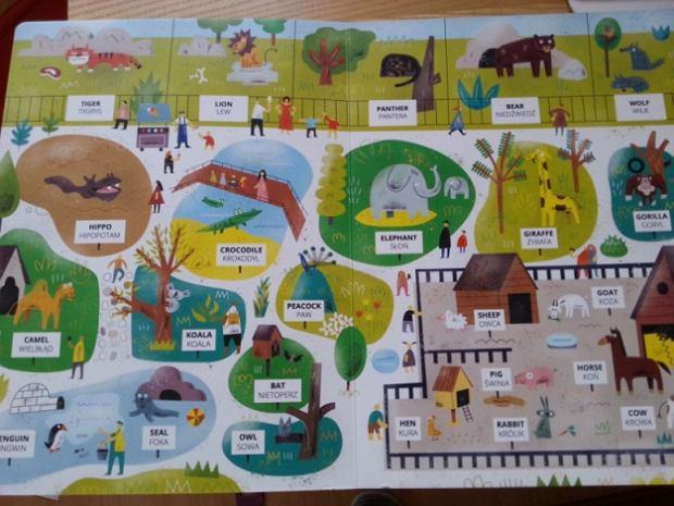 Na tropie angielskich słówek w zoo