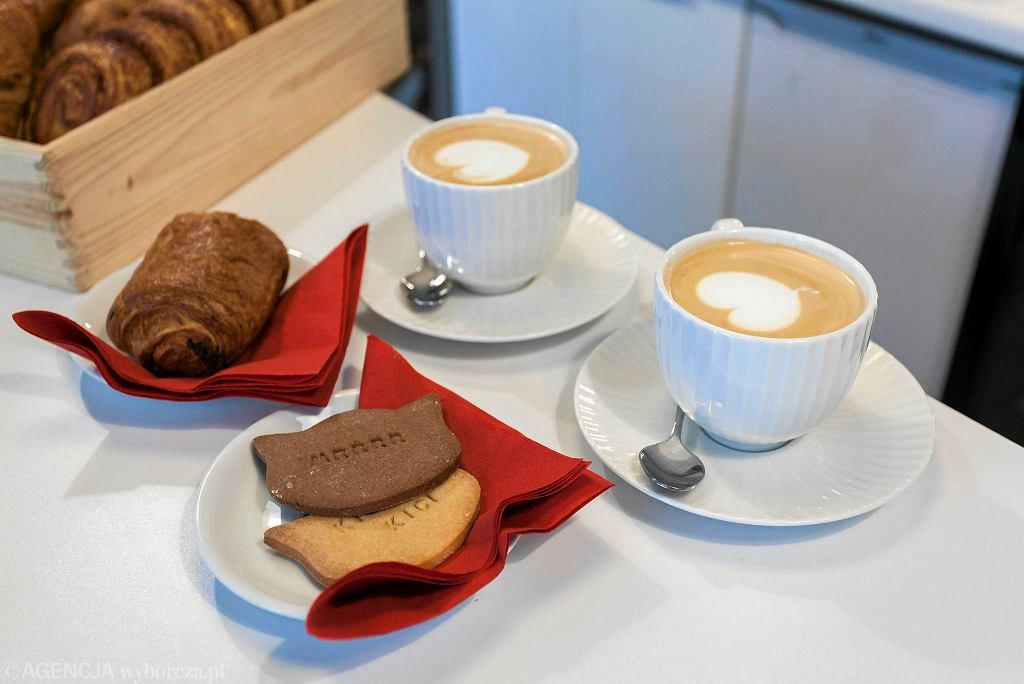 Miau Cafe - kawiarnia z kotami / DAWID ZUCHOWICZ