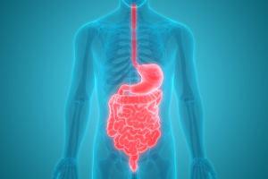 Grzybica przewodu pokarmowego: objawy, leczenie