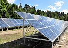 URE organizuje długo oczekiwane aukcje sprzedaży prądu z wiatru i słońca. Spadną ceny megawatogodziny