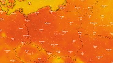Długoterminowa prognoza pogody. Koniec wakacji będzie upalny. Na termometrach nawet 32 stopnie