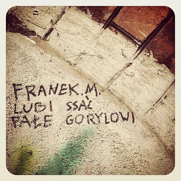 Cześć Franek!