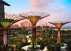 Futurystycznie, bezpiecznie, bajecznie. 10 wielkich atrakcji Singapuru [ZDJĘCIA]