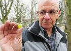 Afera o jedną kulkę winogrona w Biedronce. Klient posmakował, ochrona... wezwała policję