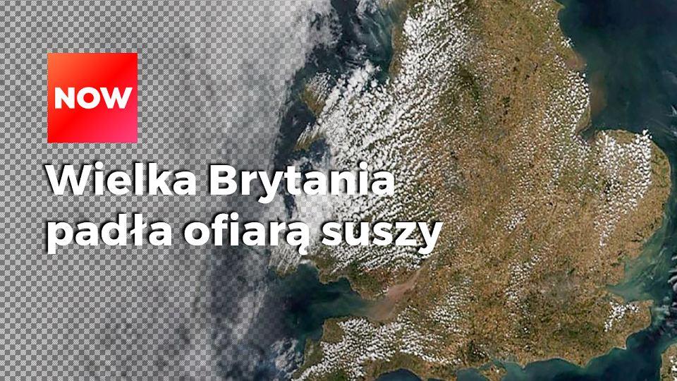 7378197e399888 Dwa miesiące i dwa zdjęcia satelitarne. Zniszczenia po suszy widać gołym  okiem