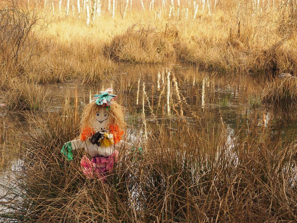 Jak zrobić marzannę? Najlepiej z przyjaznych dla środowiska, naturalnych materiałów. Zdjęcie ilustracyjne, Etnografotograf/shutterstock.com