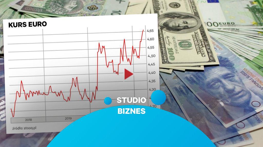 'Studio Biznes' o kursie polskiej waluty