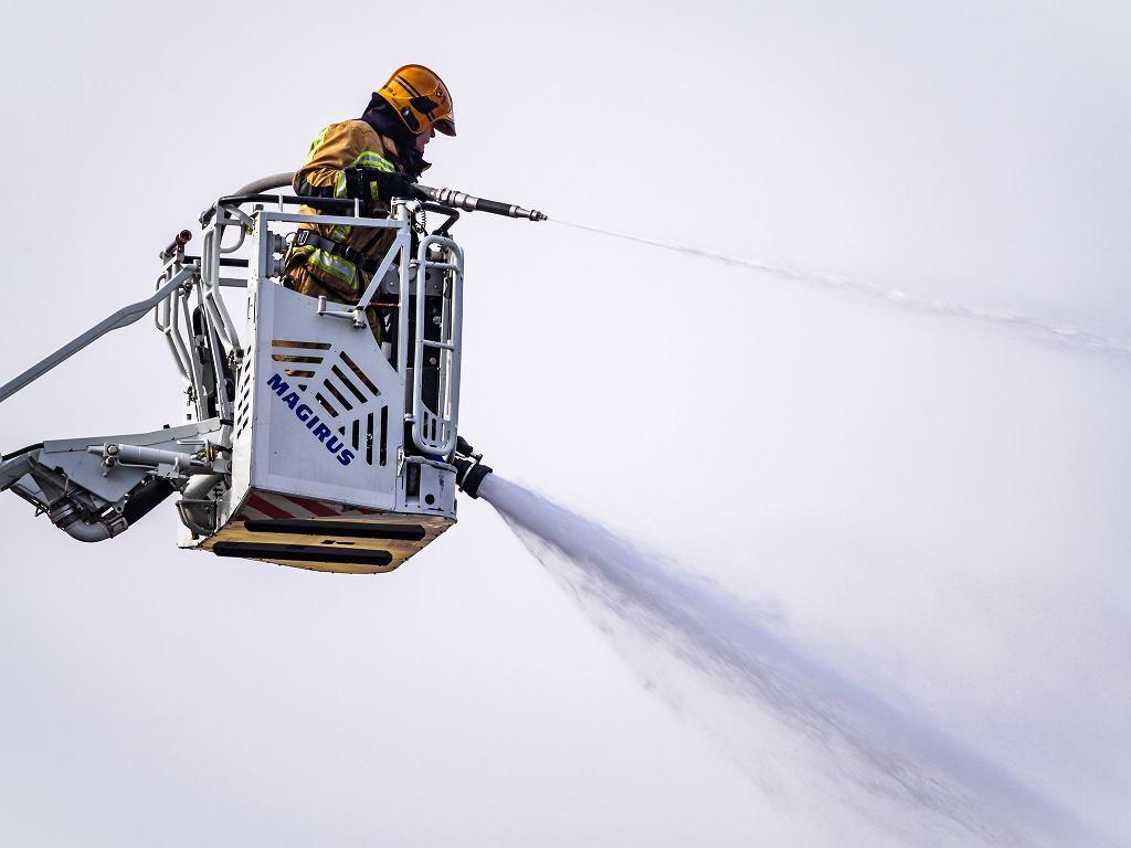 Holenderski strażak / zdjęcie ilustracyjne