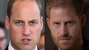 książę William, Harry