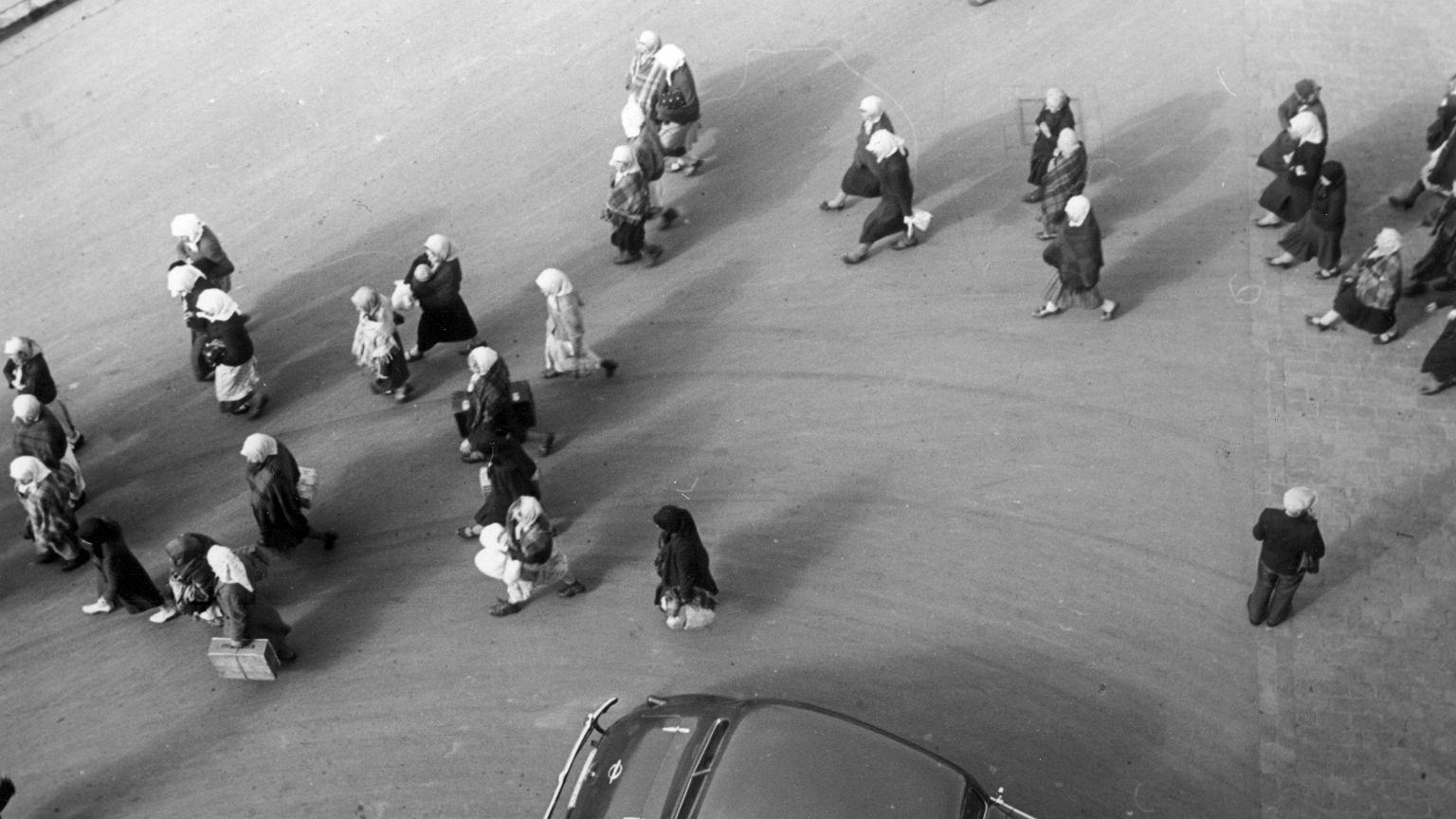 Grupa kobiet / zdjęcie ilustracyjne