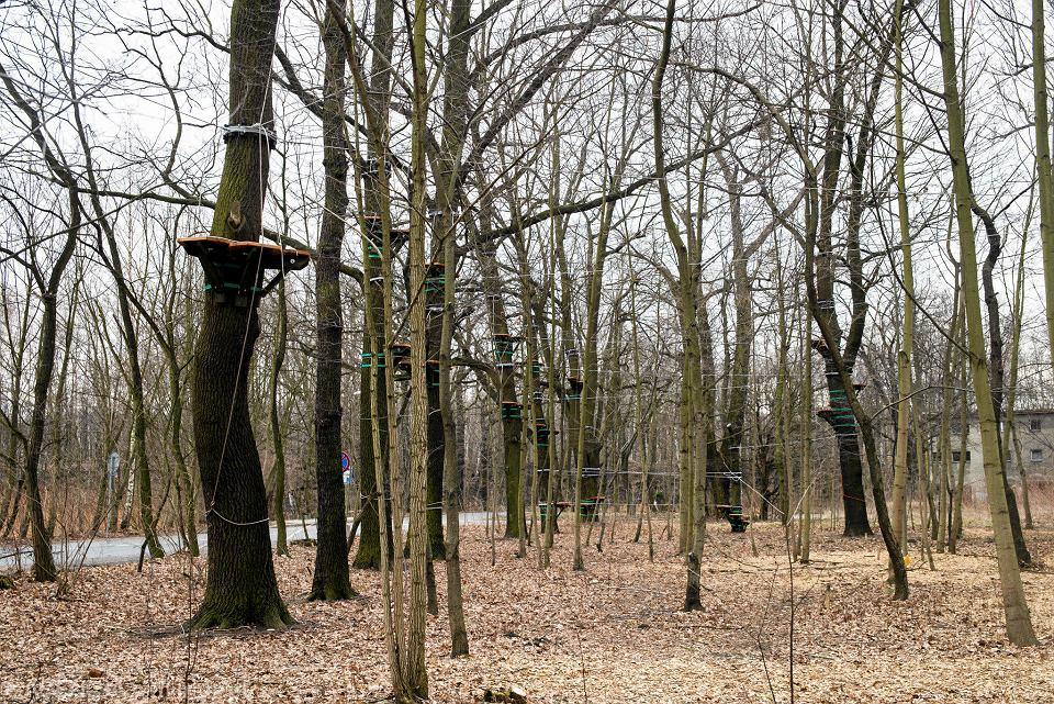 Zdjęcie numer 7 w galerii - Na Muchowcu powstaje park linowy 3Maupy. Otwarcie nowej atrakcji planowane jest na maj
