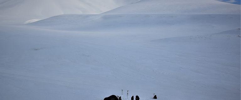Weterani przeszli 70 km lodowej pustyni