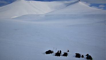 Wyprawa weteranów na Spitsbergen