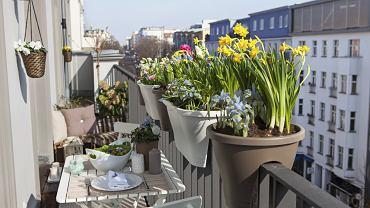 Piękny balkon. Zdjęcie ilustracyjne