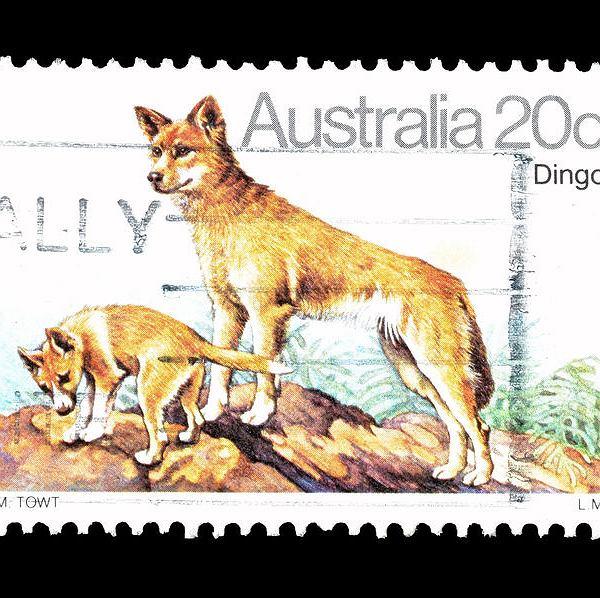 Znaczek pocztowy Australia