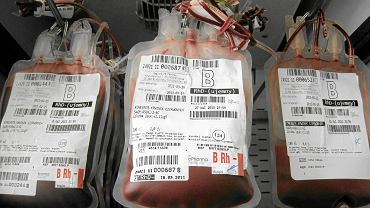 Bank krwi