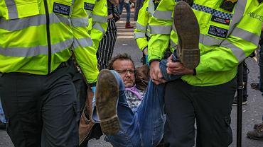 Londyn. Protesty ekologów