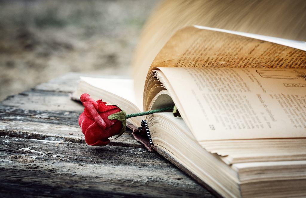 Książki romanse będą dobrym wyborem na wieczorny relaks. Zdjęcie ilustracyjne, A.G.A/shutterstock.com