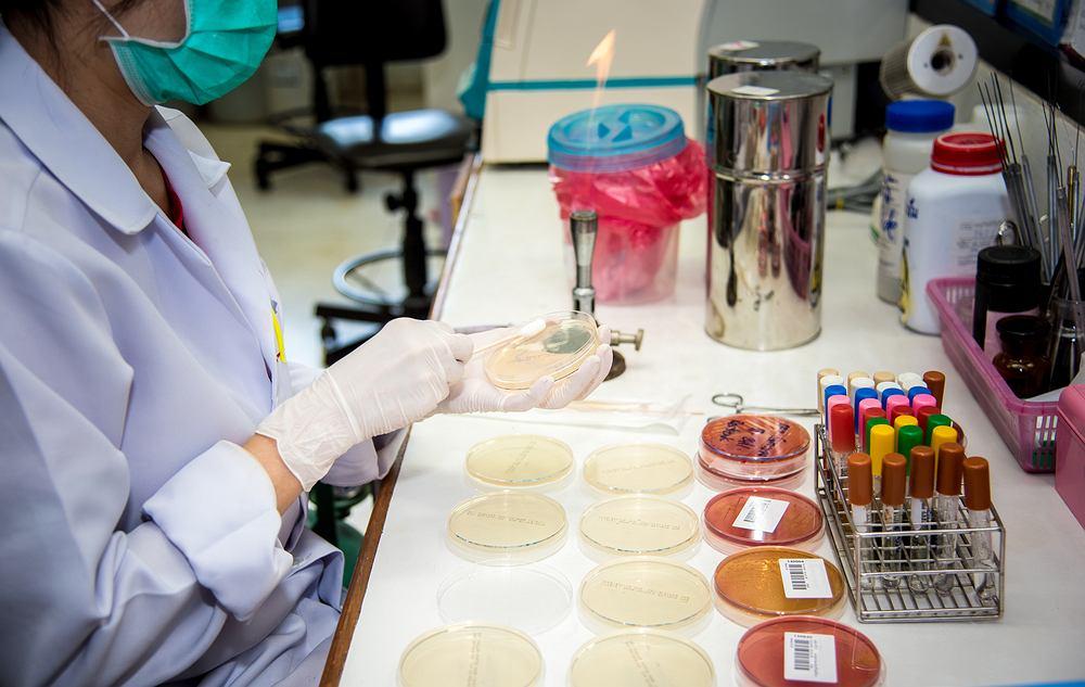 Patomorfologia jest szczególnie pomocna, gdy wcześniej wykonane u pacjenta badania i ich wyniki nie dają jednoznacznej odpowiedzi