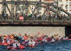 Red Bull Wiosłem po Odrze: Sto załóg ścigało się pod mostami Wrocławia