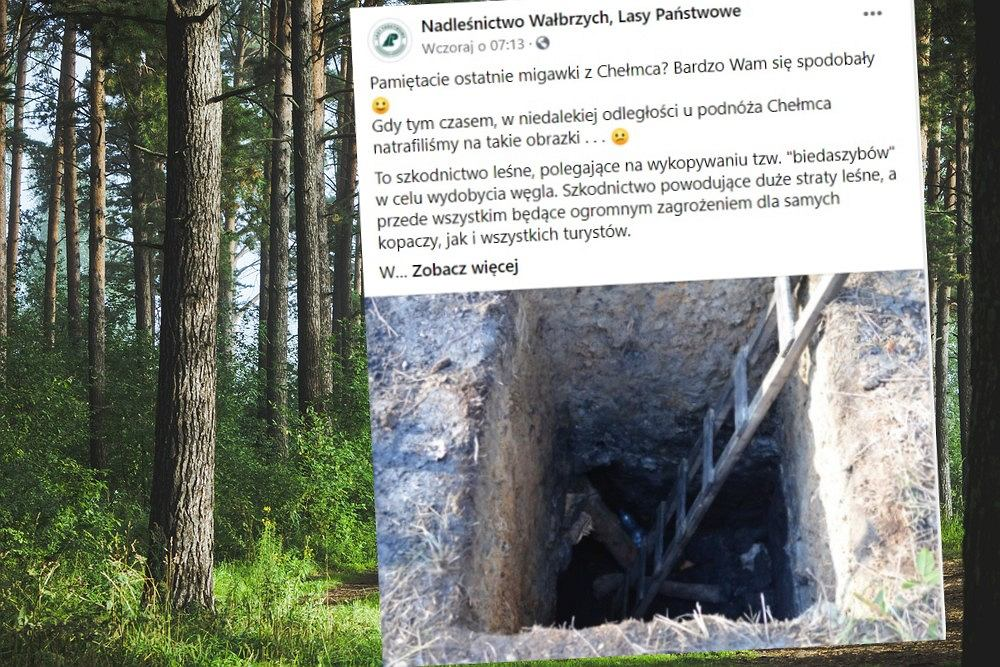 Lasy Państwowe ostrzegają przed tzw. biedaszybami