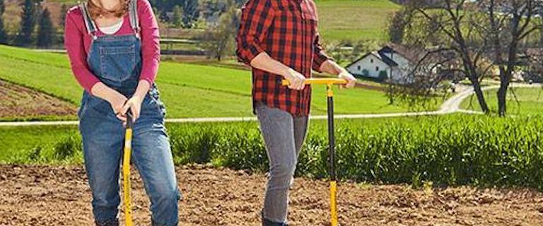 Niezbędne narzędzia ogrodowe do sadzenia roślin i warzyw: top 18