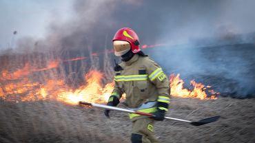 Pożar w Biebrzańskim Parku Narodowym. W akcji gaśniczej uczestniczy ponad 160 strażaków zawodowych i ochotników z okolicznych miejscowości oraz straż leśna i pracownicy parku. Niestety samo gaszenie jest bardzo skomplikowane. Strażacy nie mogą używać wozów bojowych i sprzętu ponieważ do miejsc objętych ogniem nie ma dojazdu.