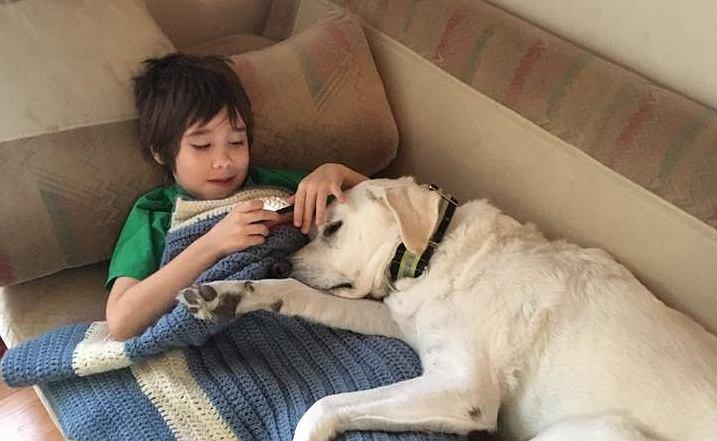 Wyjątkowa relacja psa i chłopca cierpiącego na autyzm. Zwierzę pociesza go i pomaga mu zasnąć, gdy ma koszmary