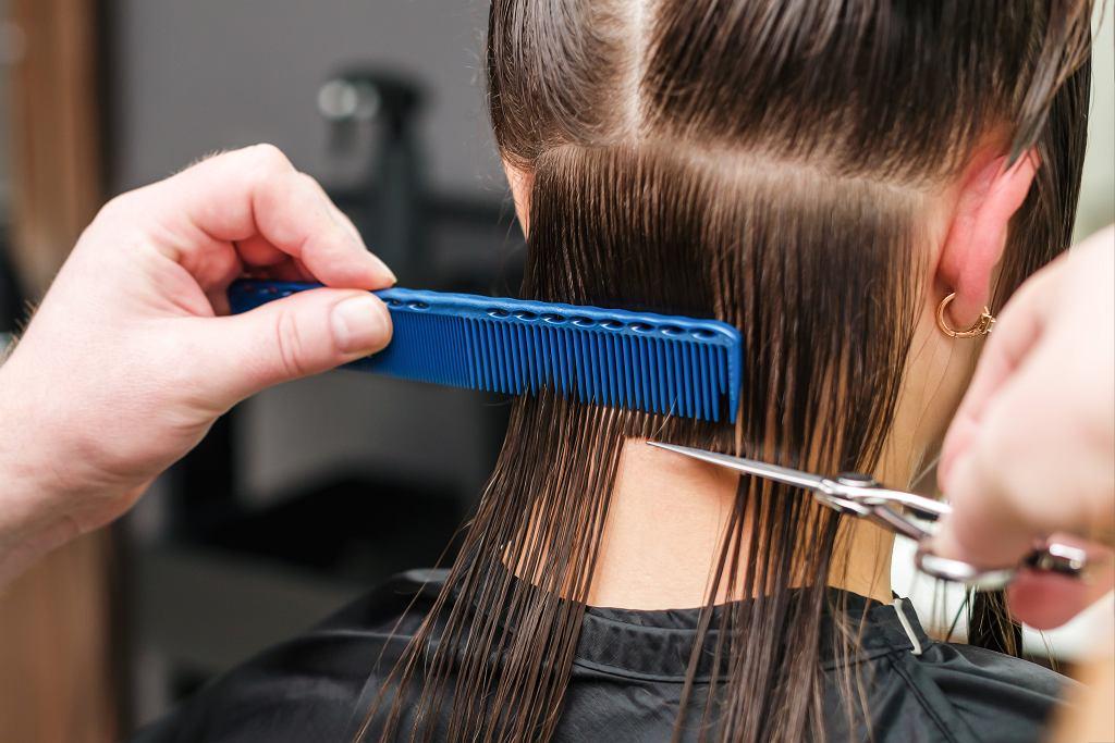 Modne fryzury na lato. Te szałowe cięcia dodadzą szyku, klasy i odejmą lat (zdjęcie ilustracyjne)