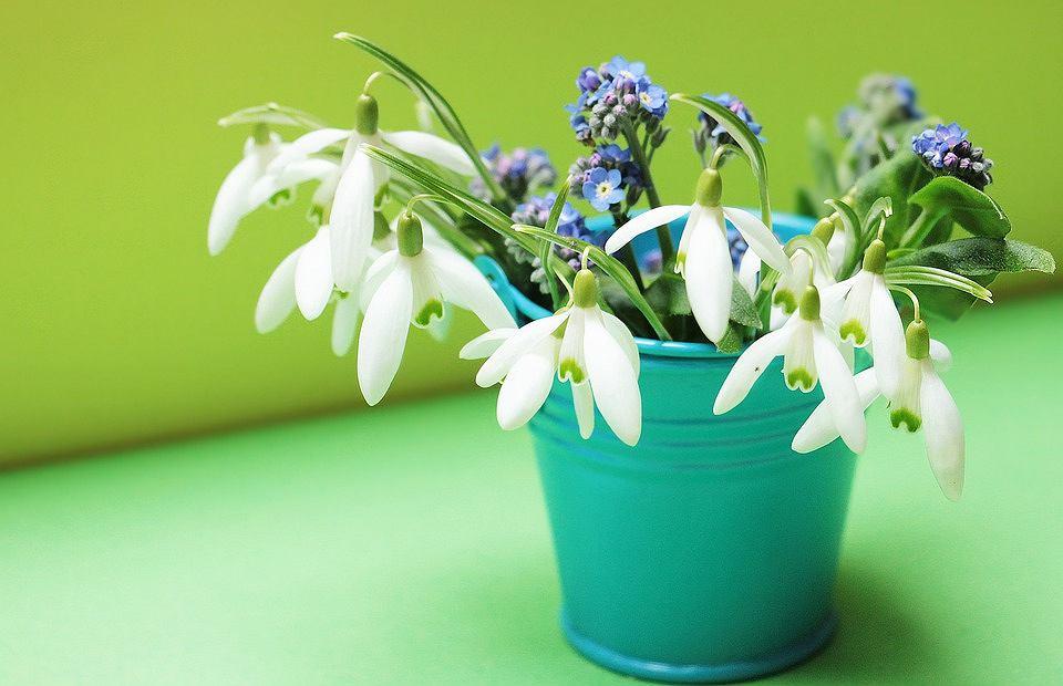 Wiaderko dekoracyjne na kwiaty