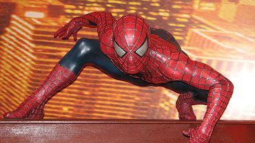 Spiderman, FOTOGRAFIA ILUSTRACYJNA